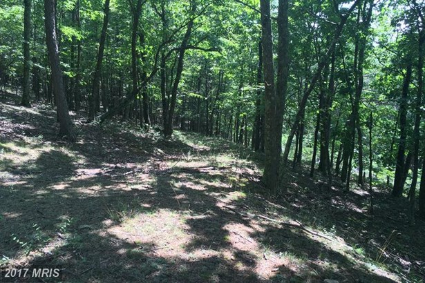 Lot-Land - AUGUSTA, WV (photo 1)