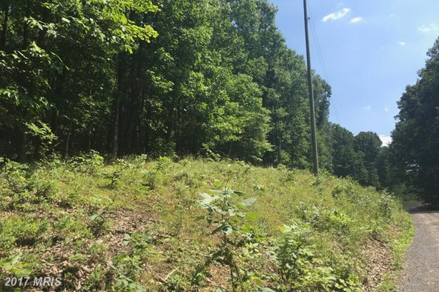 Lot-Land - AUGUSTA, WV (photo 5)