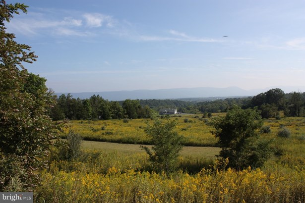 Land - MAURERTOWN, VA (photo 3)
