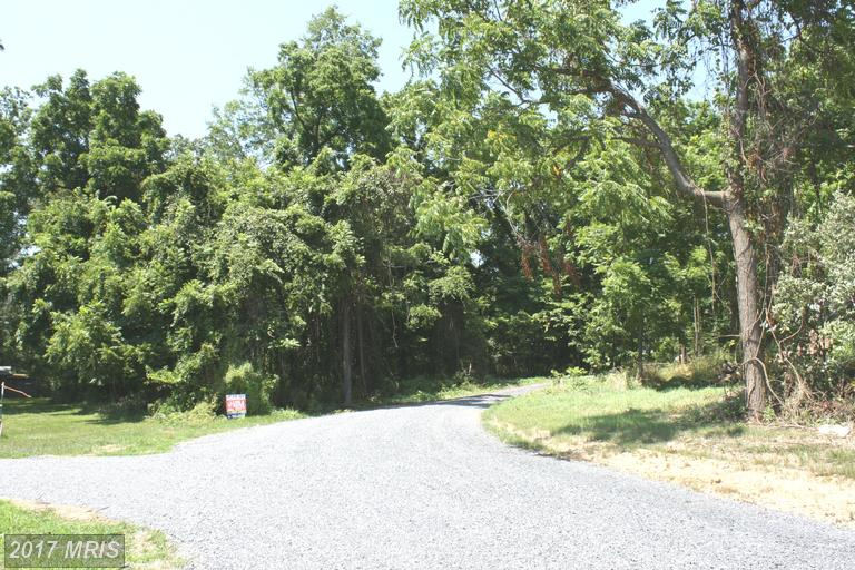 Lot-Land - WINCHESTER, VA (photo 3)