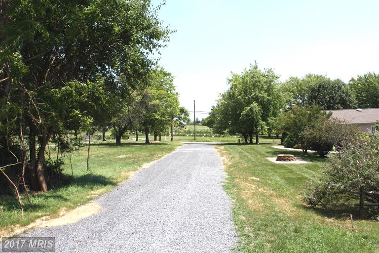 Lot-Land - WINCHESTER, VA (photo 4)