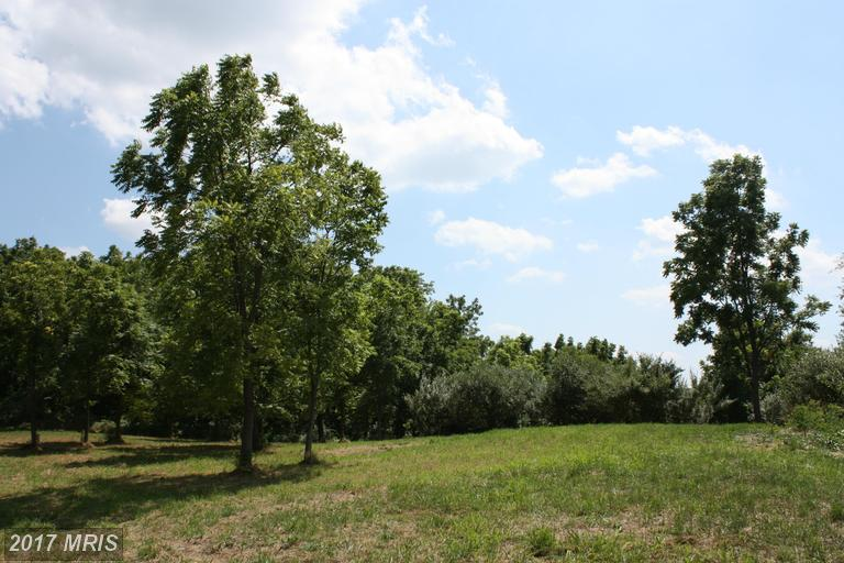 Lot-Land - WINCHESTER, VA (photo 5)