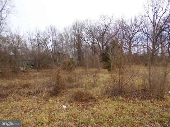 Land - BOYCE, VA (photo 2)
