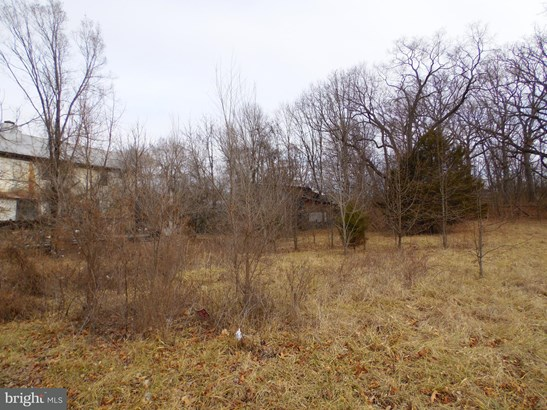 Land - BOYCE, VA (photo 3)