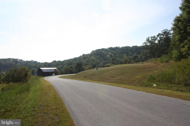 Land - MAURERTOWN, VA (photo 4)