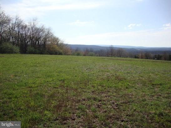 Vacant land - CROSS JUNCTION, VA (photo 4)