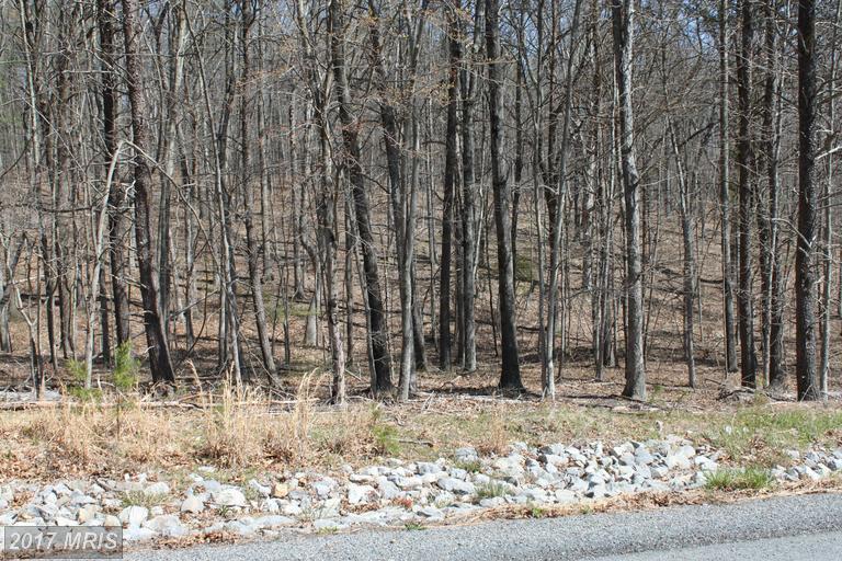 Lot-Land - WINCHESTER, VA (photo 1)