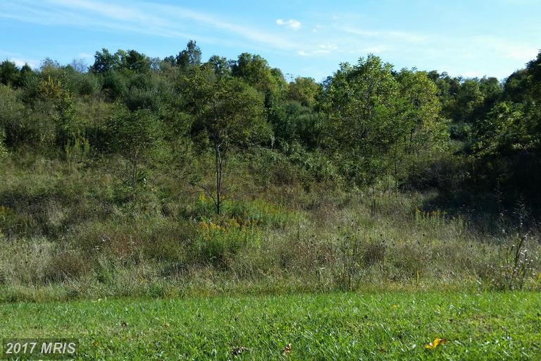 Lot-Land - FRONT ROYAL, VA (photo 3)