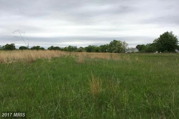 Lot-Land - BUNKER HILL, WV (photo 1)