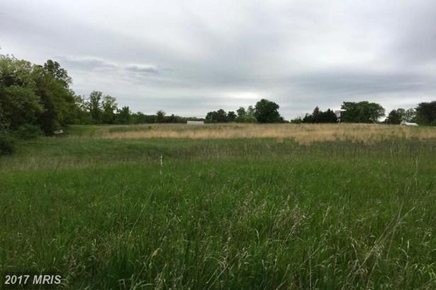 Lot-Land - BUNKER HILL, WV (photo 2)