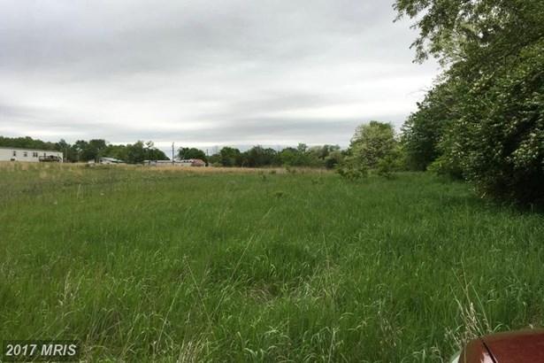 Lot-Land - BUNKER HILL, WV (photo 4)