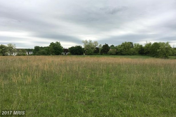 Lot-Land - BUNKER HILL, WV (photo 5)