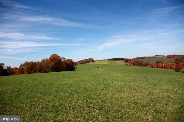 Vacant land - EGLON, WV