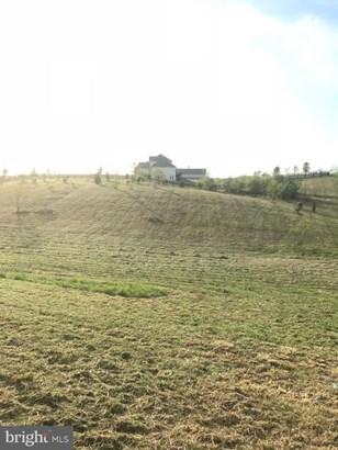 Vacant land - CLEAR BROOK, VA (photo 4)