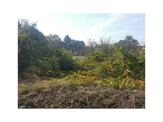 Land And Farms - Southampton County, VA (photo 2)