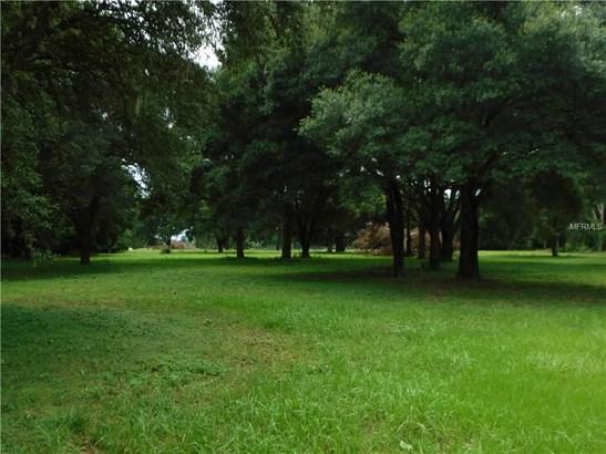 Ranchland - THONOTOSASSA, FL (photo 3)