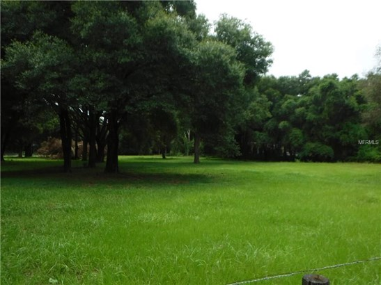 Ranchland - THONOTOSASSA, FL (photo 4)
