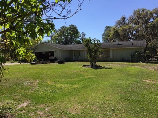 Single Family Home - ODESSA, FL (photo 1)