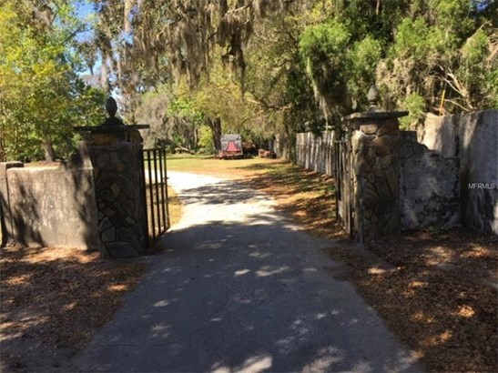 Single Family Home - ODESSA, FL (photo 3)