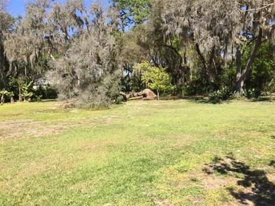 Single Family Home - ODESSA, FL (photo 4)