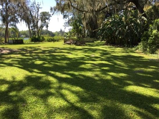 Single Family Home - ODESSA, FL (photo 5)