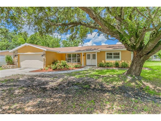 Single Family Home, Ranch - BRANDON, FL (photo 1)