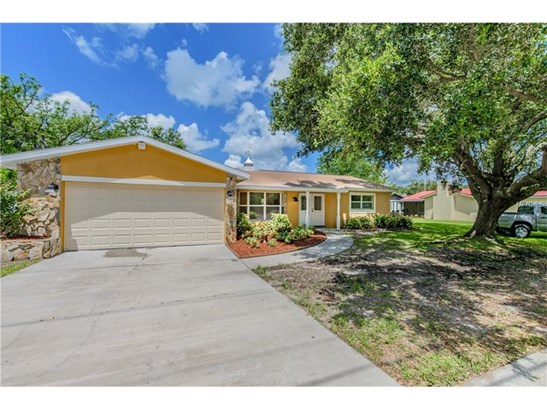 Single Family Home, Ranch - BRANDON, FL (photo 2)