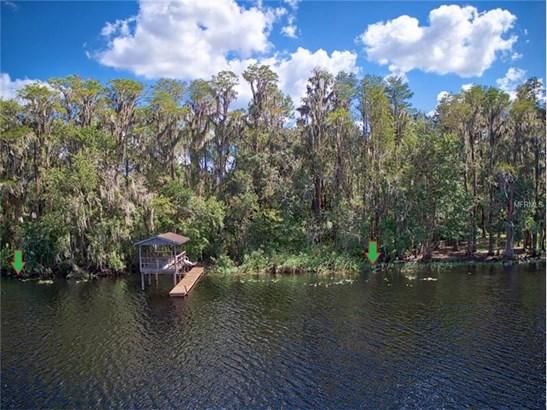 Residential - ODESSA, FL (photo 3)
