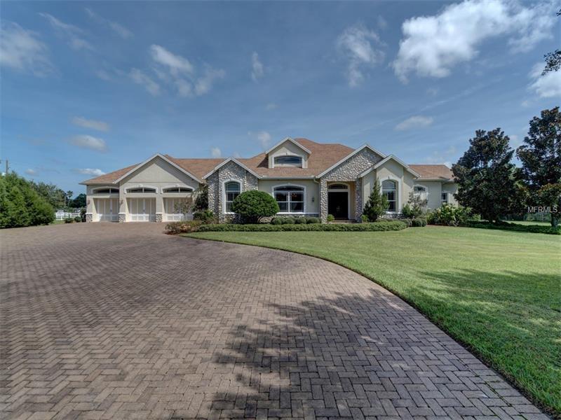 Single Family Home, Contemporary - ODESSA, FL (photo 5)