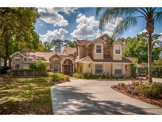 Single Family Home, Contemporary,Traditional - LUTZ, FL (photo 1)