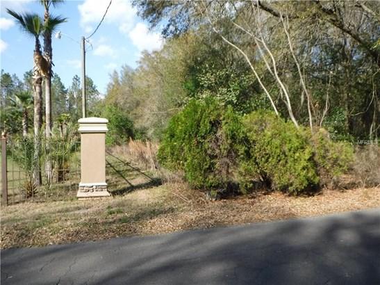 Single Family Use - SEFFNER, FL (photo 2)
