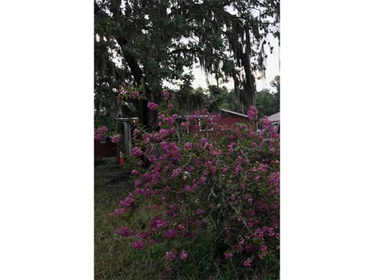 Single Family Home, Traditional - DOVER, FL (photo 2)