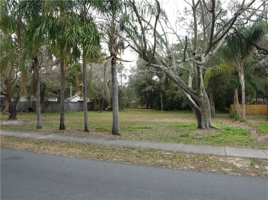 Residential Development - TEMPLE TERRACE, FL (photo 1)