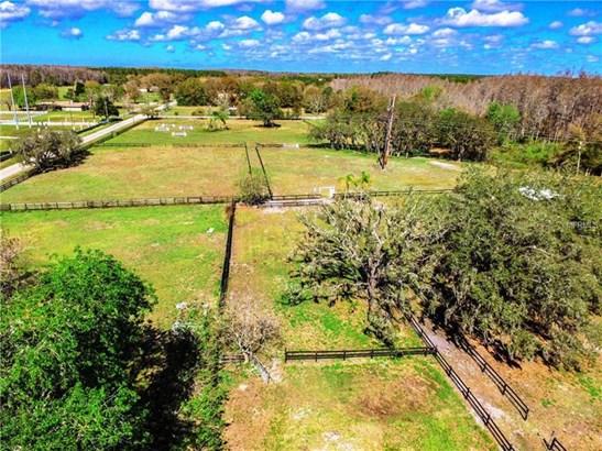 Land - LUTZ, FL (photo 3)