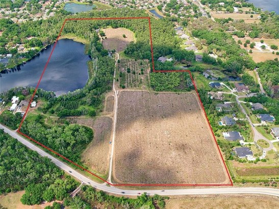 Unimproved Land - ODESSA, FL (photo 1)