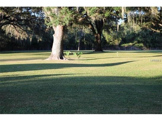 Single Family Use - SAN ANTONIO, FL (photo 1)