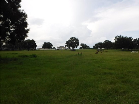 Ranchland - THONOTOSASSA, FL (photo 1)