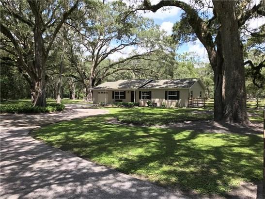 Single Family Home, Ranch - SAN ANTONIO, FL (photo 1)