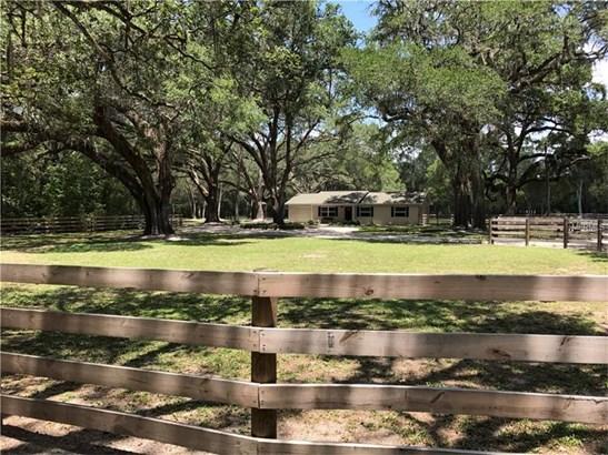 Single Family Home, Ranch - SAN ANTONIO, FL (photo 3)
