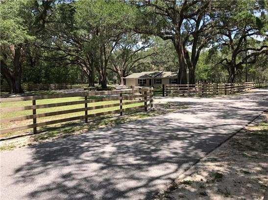 Single Family Home, Ranch - SAN ANTONIO, FL (photo 4)