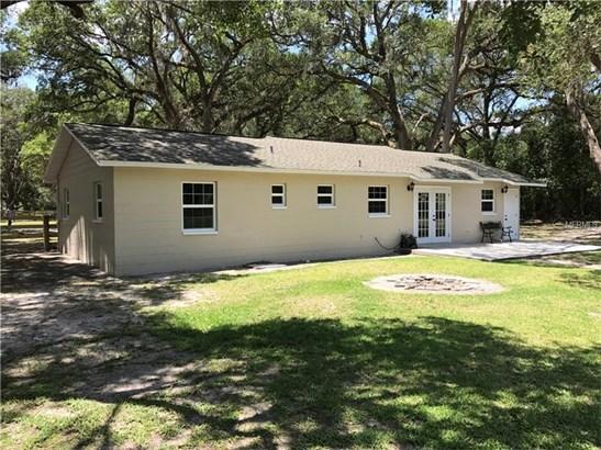 Single Family Home, Ranch - SAN ANTONIO, FL (photo 5)