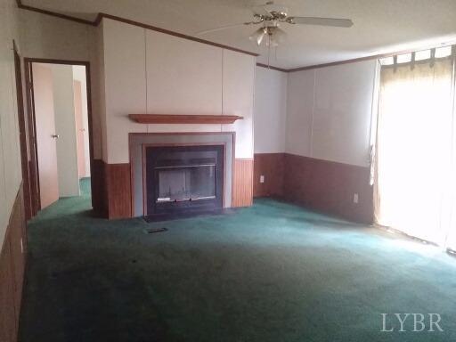 Single Family Residence, Doublewide - Amherst, VA (photo 4)