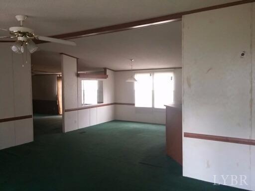Single Family Residence, Doublewide - Amherst, VA (photo 5)