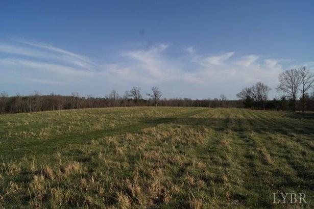 Land - Brookneal, VA (photo 1)