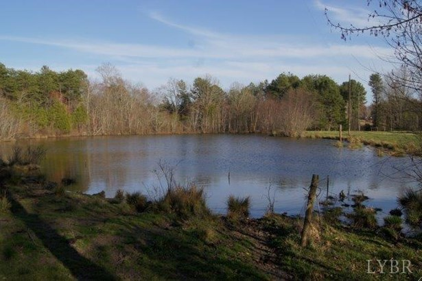 Land - Brookneal, VA (photo 4)
