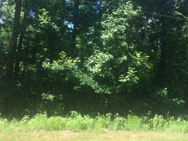 Unimproved Land - Amherst, VA (photo 1)