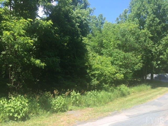 Unimproved Land - Amherst, VA (photo 3)