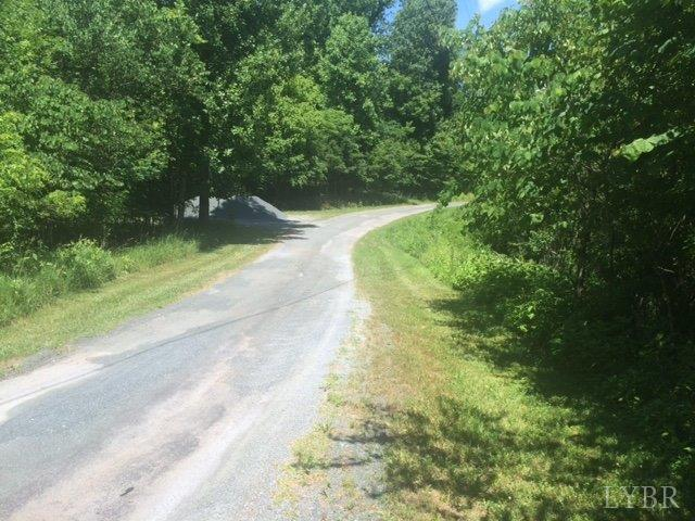 Unimproved Land - Amherst, VA (photo 4)
