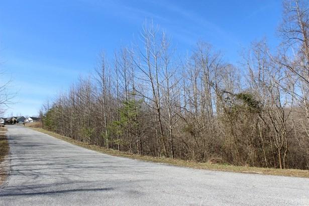 Land - Monroe, VA (photo 4)