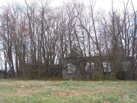 Unimproved Land - Danville, VA (photo 2)